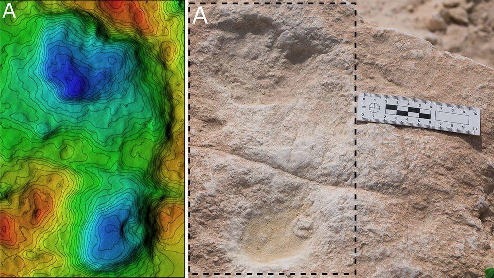 Foto: Estas huellas fueron hechas por los pies de antiguos humanos cuando atravesaron la orilla de un lago en Arabia Saudí hace unos 120.000 años. Foto: Mathew Stewart