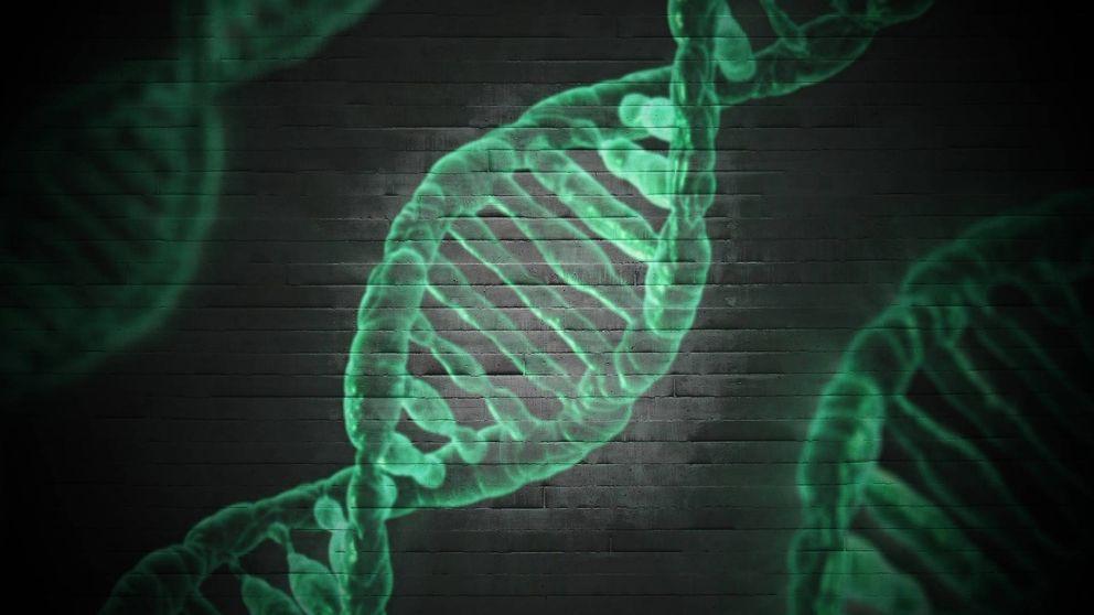Las proteínas Hero pueden proteger ante enfermedades neurodegenerativas