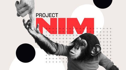 El documental que debes ver   'Proyecto Nim', de James Marsh, disponible en Amazon