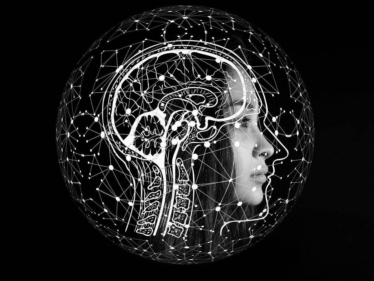 Foto: La inteligencia artificial puede predecir enfermedades cerebrales. Foto: Pixabay