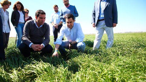 Moreno Bonilla se pone a trabajar el campo andaluz en busca del voto
