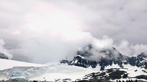 La Antártida era una selva tropical hace 90 millones de años
