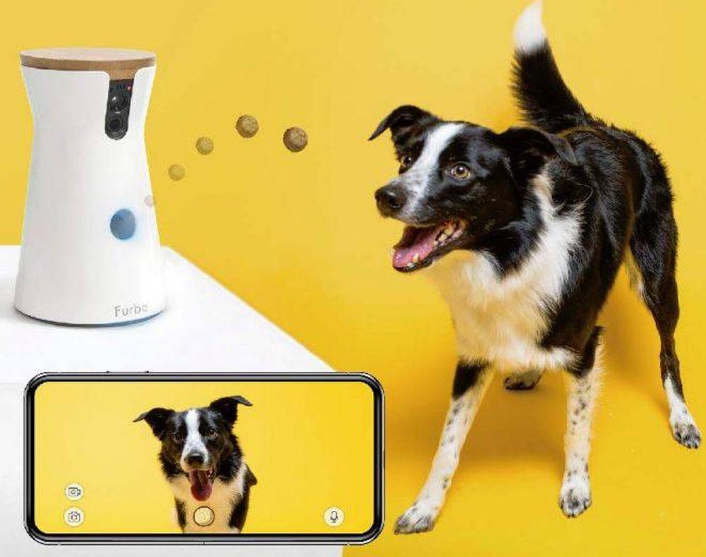 Foto: Furbo: cámara para perros y lanzamiento de golosinas
