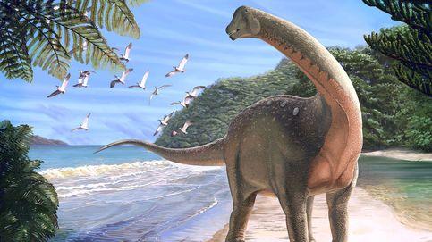 Descubren el 'Mansurasaurio', el dinosaurio que apareció entre las pirámides