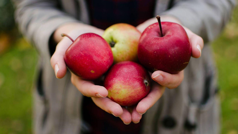 La manzana es una fruta muy completa. (Aarón Blanco Tejedor para Unsplash)