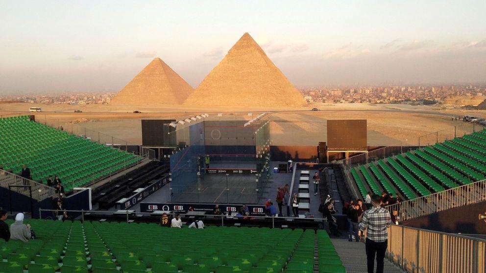 Nuevos miembros en el zoo de Berlín y Squash en Egipto: el día en fotos