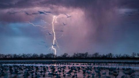 Momias y tormentas espaciales: las fotos científicas más espectaculares de 2016