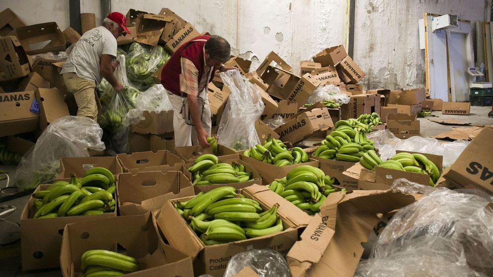 Foto: Cinco toneladas de cocaína oculta en el polígono industrial Santa Teresa de Málaga. (EFE)