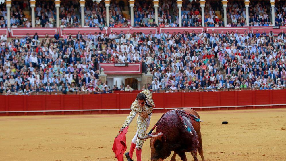 Foto: Una corrida de toros en la Maestranza (Sevilla). (EFE)