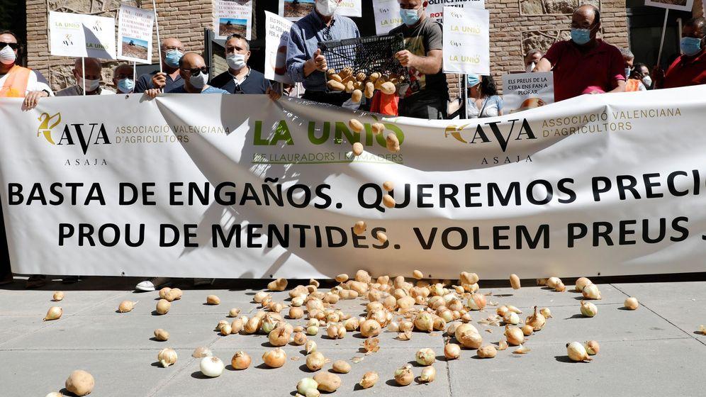Foto: Asociaciones de agricultores protestan en las calles de Valencia. (EFE)