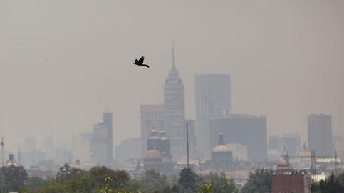 Fase 1 de contingencia ambiental por ozono en México