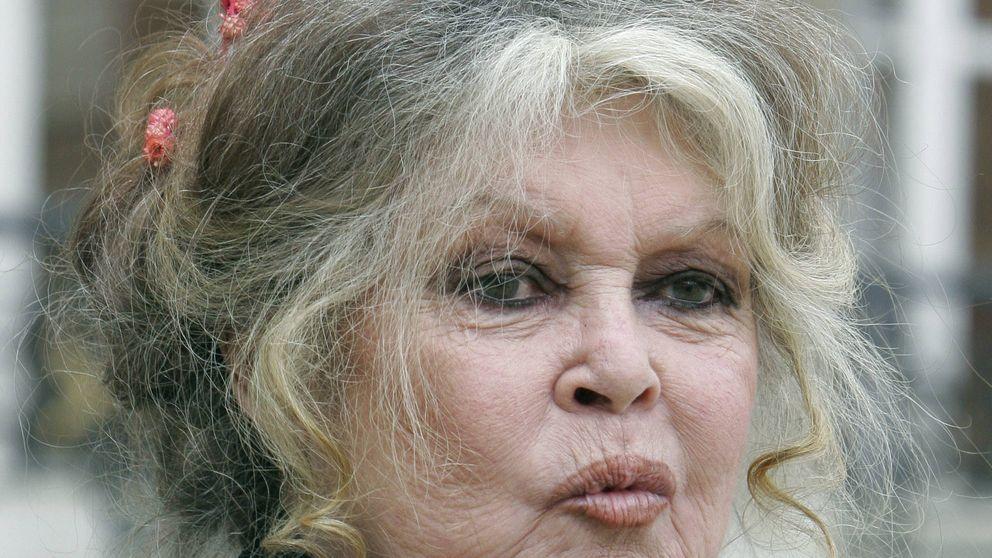 Brigitte Bardot, contra las que denuncian acoso pero seducen a los productores
