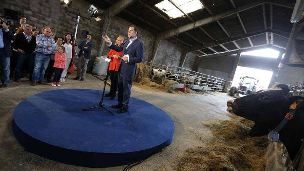 Foto: Mariano Rajoy durante un mitin en Gozón, Asturias (EFE)