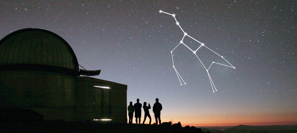 Cómo leer el cielo y la lluvia de estrellas esta misma noche
