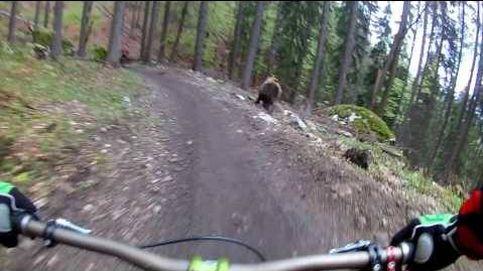 Se van de paseo en bici y se les une un oso