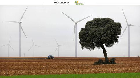 Energía verde para reactivar la economía y el empleo en la sociedad poscovid