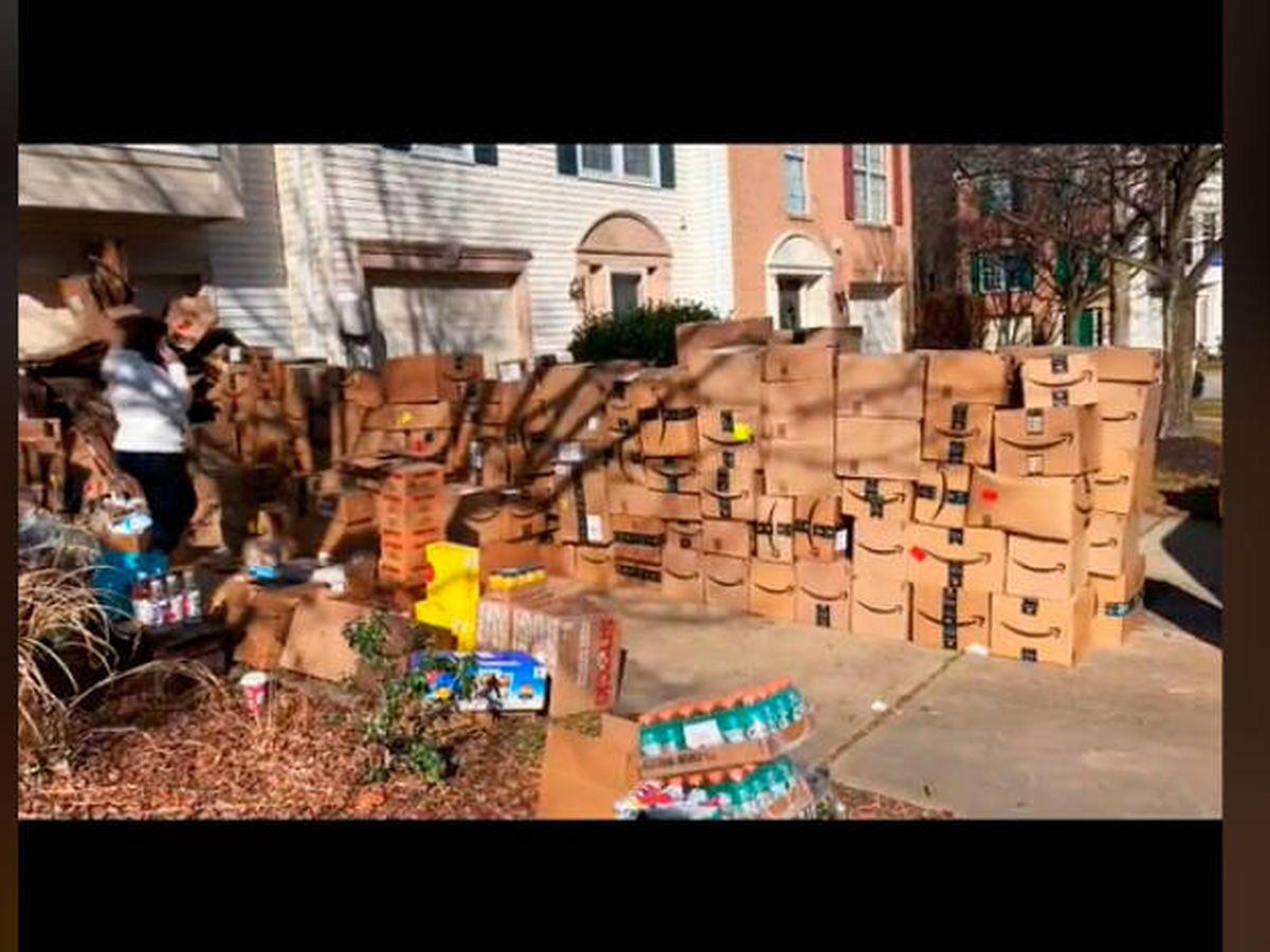 Foto: El repartidor tardó casi dos horas en dejar los 314 paquetes en el jardín (TikTok)