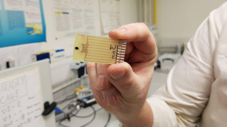 Una prueba 'low cost' para detectar sepsis podría salvar miles de vidas cada año