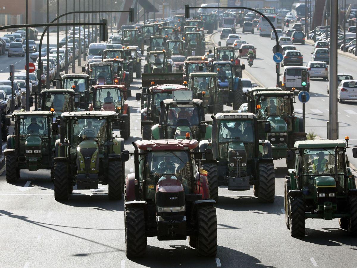 Foto: Tractorada en Valencia. (EFE)