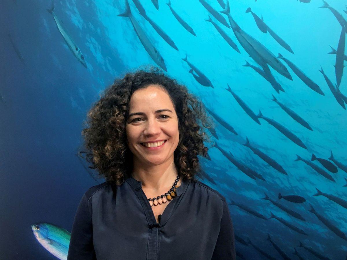 Foto: Laura Rodríguez, directora para España y Portugal de MSC (EFE)