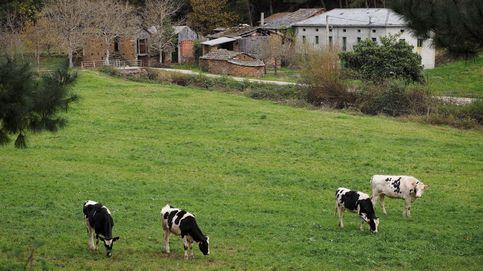 Cómo afecta la competencia agrícola de Portugal y Marruecos a la España vacía
