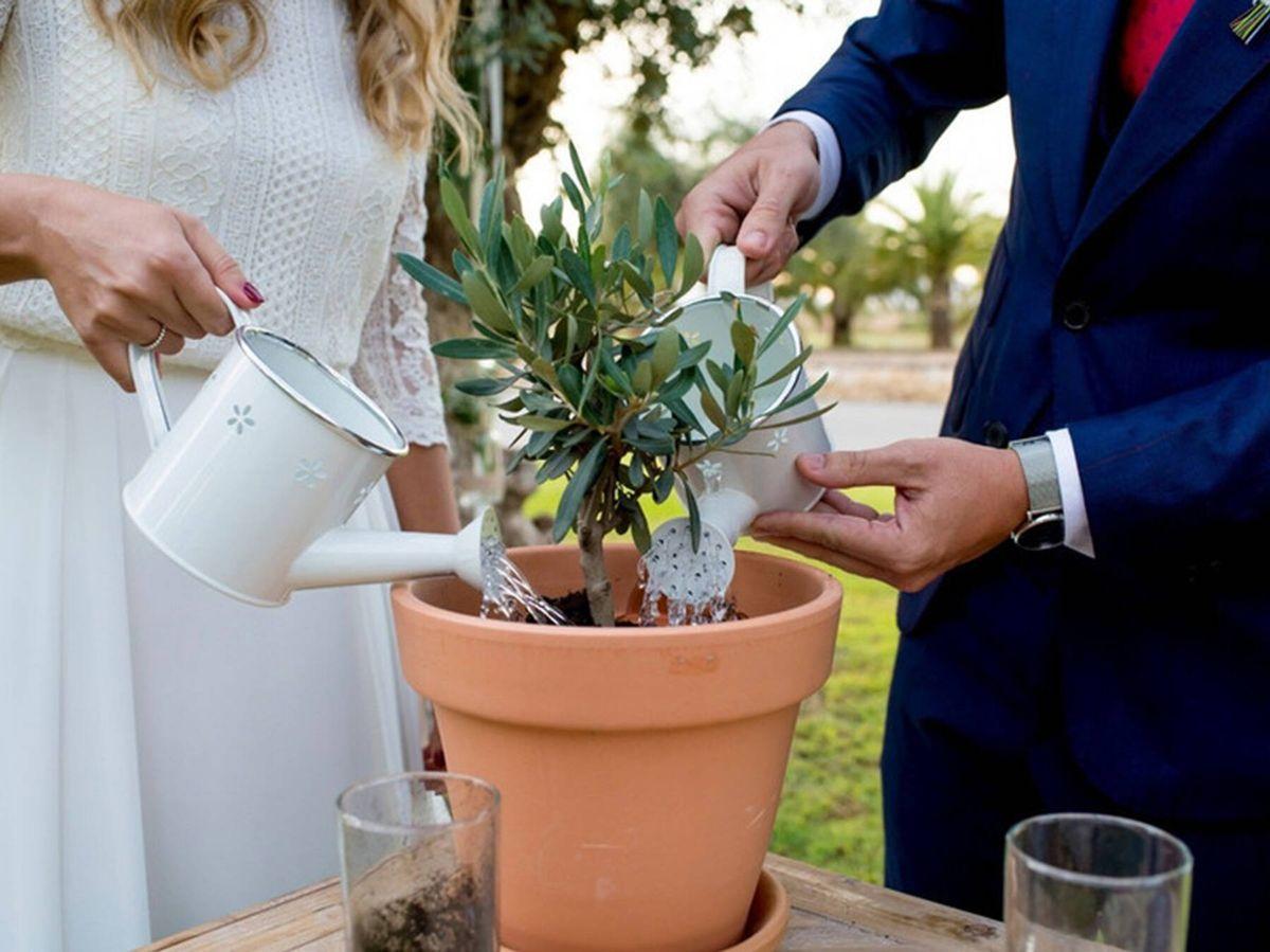 Foto: Pareja de novios realizando el ritual de la ceremonia de plantación. (Fotografía: Las Ceremonias de Isabel - Maestra de Ceremonias vía Bodas.net)