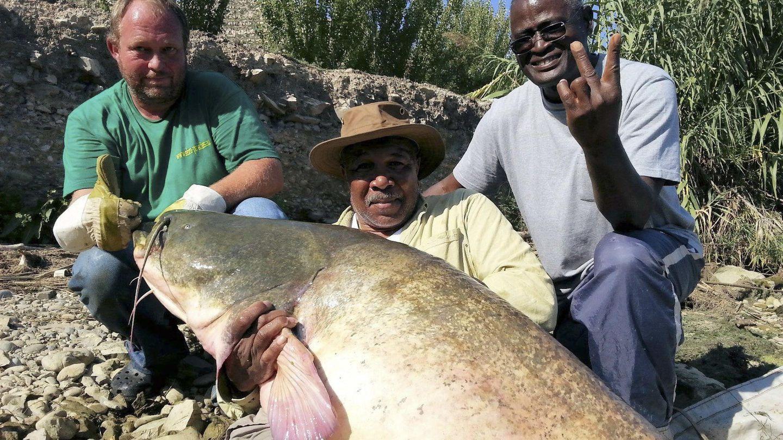 Dos marines capturan un gran pez en el embalse de Mequinenza. (EFE)