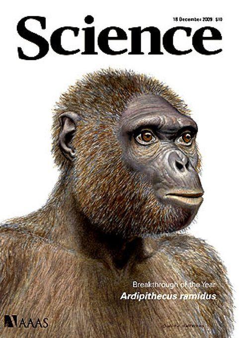 2009, el año en que la ciencia redescubrió los orígenes del ser humano