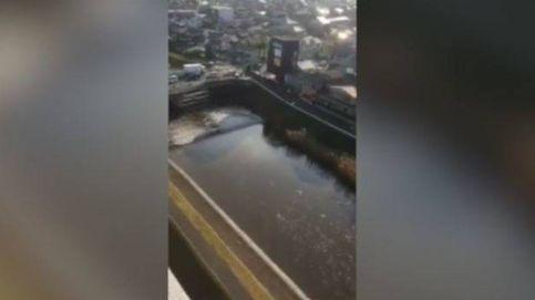 El efecto de la marea en Tagajo (Japón) después del terremoto y el tsunami