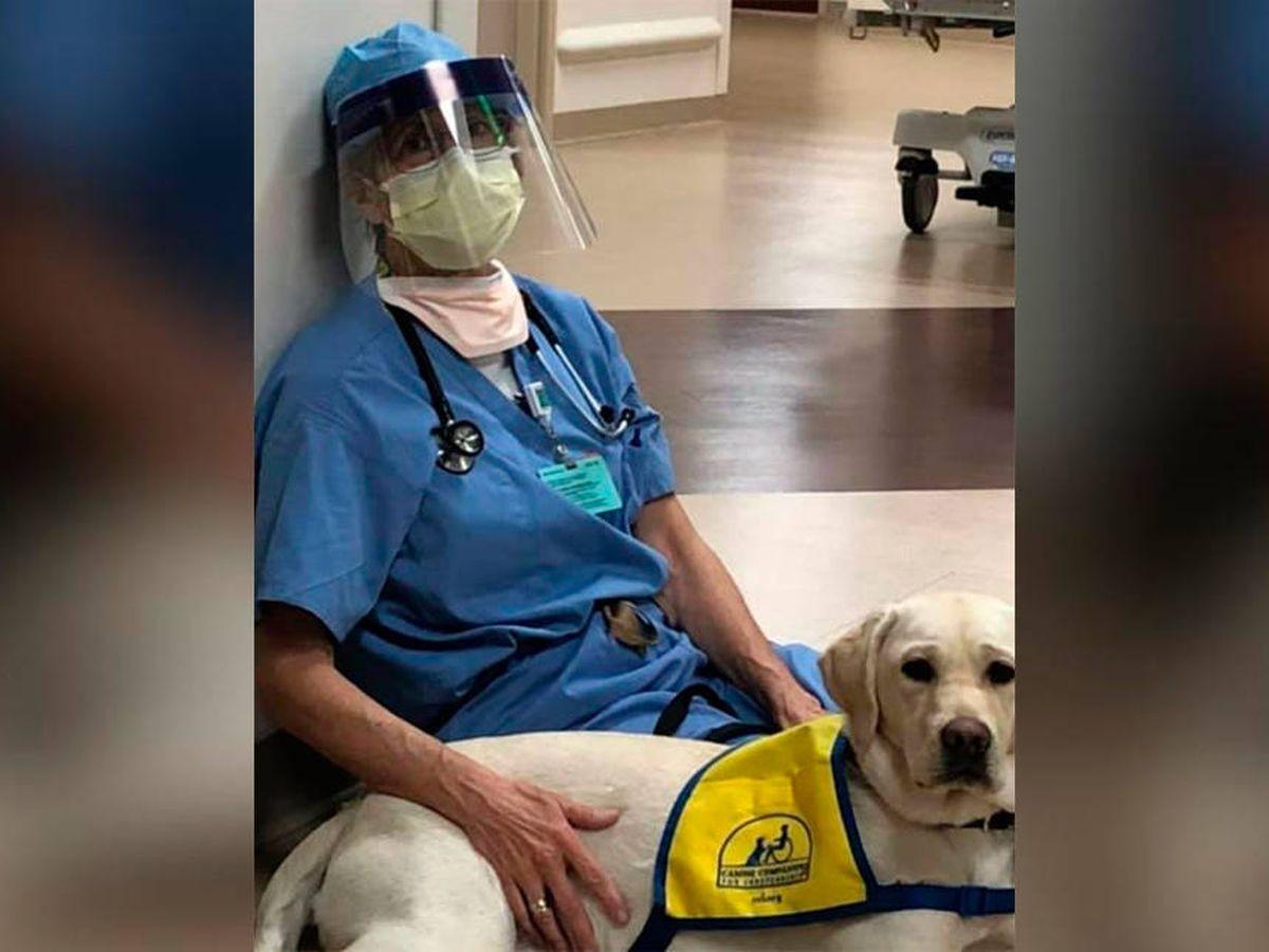 Foto: Wynn, en el suelo, junto a un sanitario que acababa de terminar con un paciente. (Facebook)