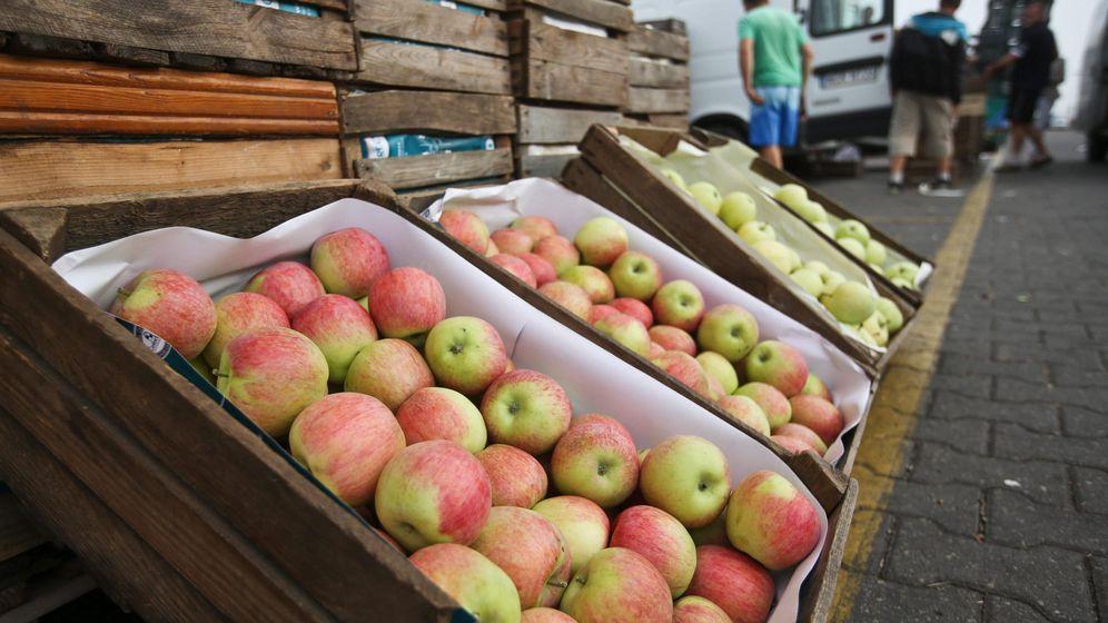 Foto: Puesto de manzanas en Varsovia. (EFE)