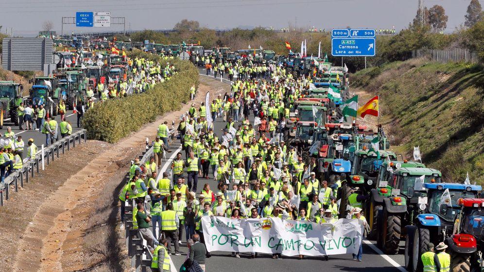 Foto: Movilización de agricultores y ganaderos en la A-4. (EFE)