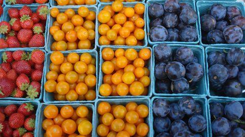 Queso, miel, frutas, verduras... de la huerta a tu mesa sin intermediarios