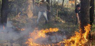Post de Sofocado el incendio forestal de Rianzo (A Coruña) tras quemar 850 hectáreas