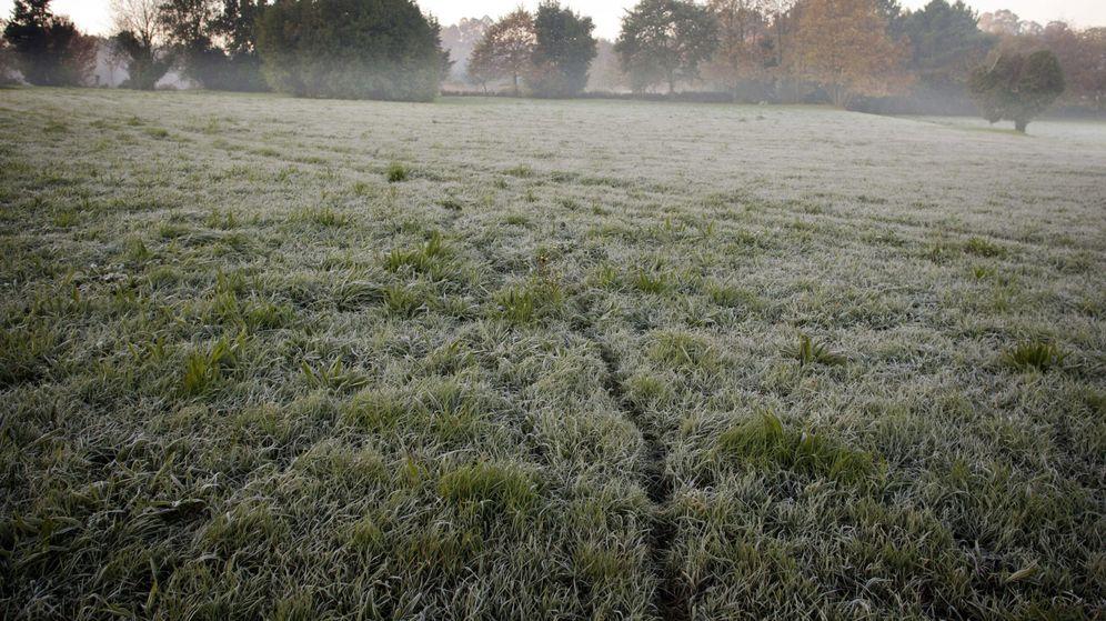 Foto: Vista general de un campo en Lugo. (EFE)