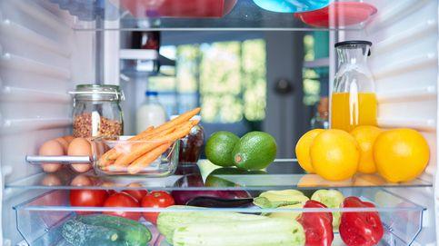 Cómo conservar de forma óptima los alimentos durante el verano