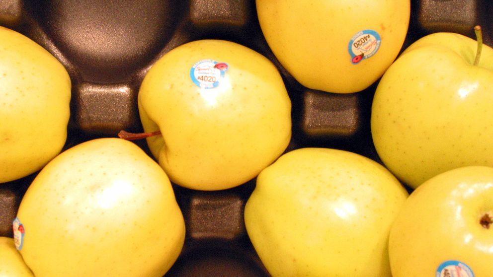 StixFresh, la pegatina que ayuda a conservar la fruta dos semanas más