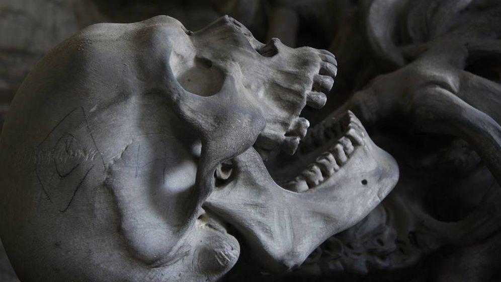 Foto: Los galos cortaban y embalsamaban la cabeza de sus enemigos. (Pixabay)