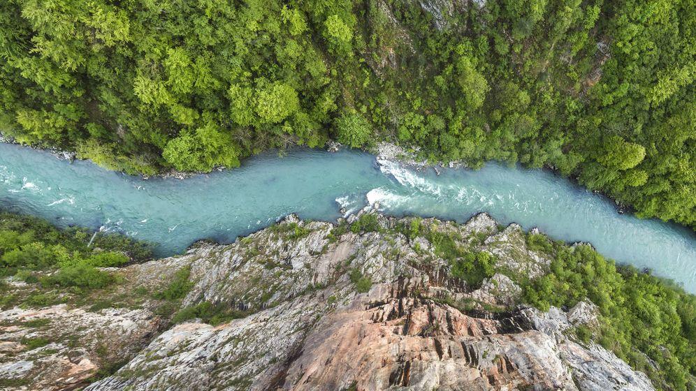 Foto: Al parecer, el agua sí puede ganarle la partida a la gravedad. (iStock)