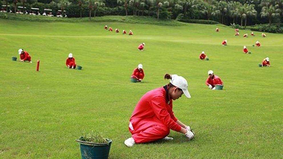 El Partido Comunista chino prohíbe las comilonas, el adulterio... y jugar al golf