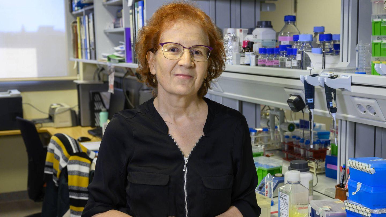Margarita del Val, responsable del Grupo de Investigación en Inmunología Viral y coordinadora de la Plataforma Interdisciplinar de Salud Global del CSIC.