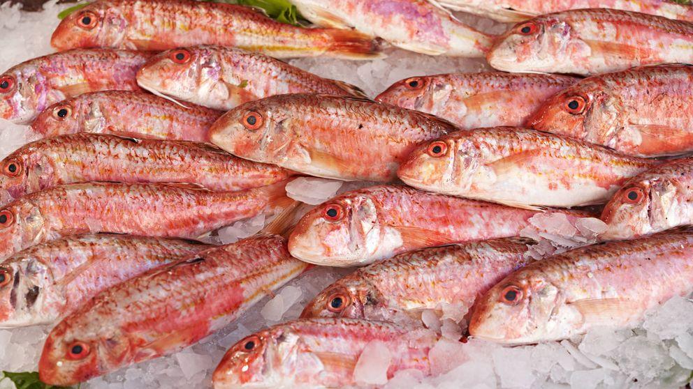 SSalmonete, el pez rosado lleno de nutrientes (y una rica receta)