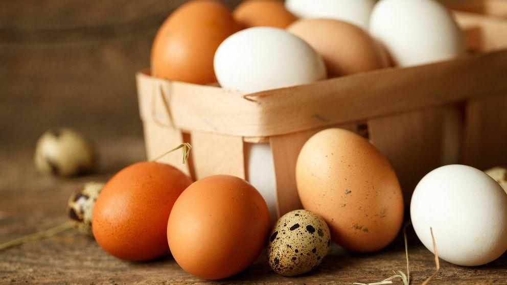 A España le sobran huevos (sanos) para aprovechar la crisis en Europa