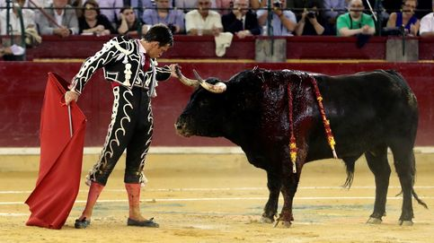 Un juez dicta que los ayuntamientos no puede impedir las corridas de toros