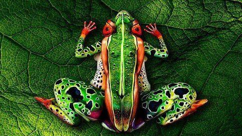 Ilusiones ópticas: ¿qué ves en estas imágenes? Así te engaña el cerebro