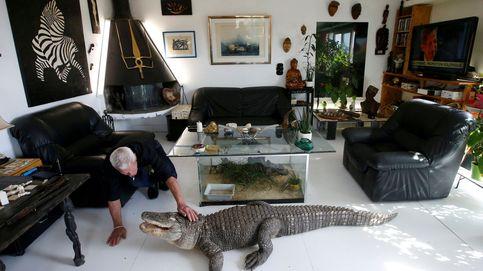 Este francés comparte su casa con 400 reptiles