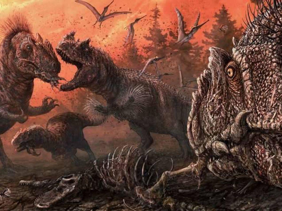 Animales Un Estudio Revela Que Los Dinosaurios Eran Canibales En Epocas De Crisis Encuentra las mejores imágenes de stock de dinosaurios. estudio revela que los dinosaurios eran