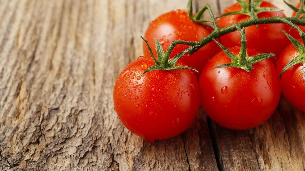 Chicote, El Ejido y los tomates de Lola