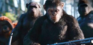 Post de 'La guerra del planeta de los simios': y el ser humano cavó su propia tumba