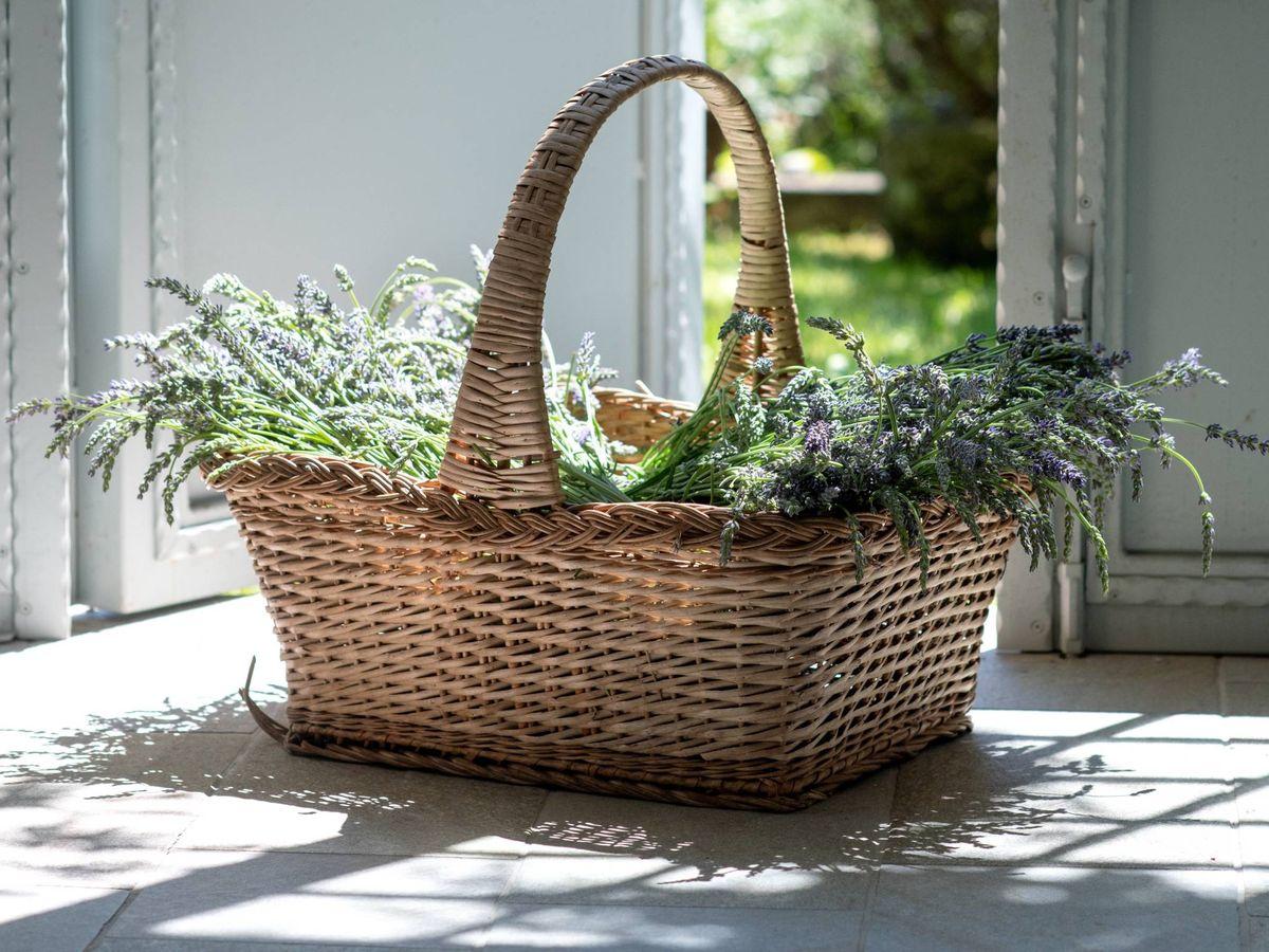 Foto: Enamórate de las cestas de decoración de Zara Home. (Elena Kloppenburg para Unsplash)
